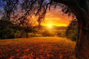 La luz del sol al amanecer y al atardecer permite hacer fotos muy bonitas gracias a los atractivos colores de la iluminación natural en esos momentos