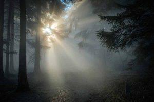 Los tipos de iluminacion en fotografia