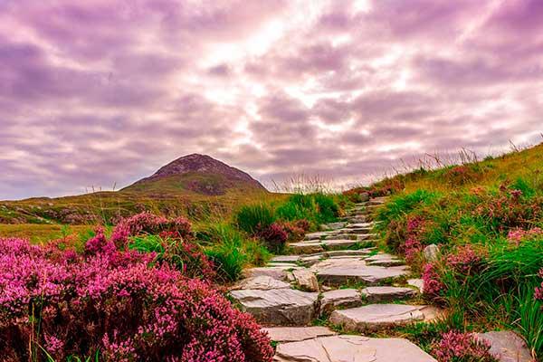 Luz natural de los días nublados para imágenes con iluminación suave y sin contrastes